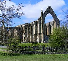 Bolton Abbey by Ray Clarke