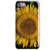 Yellow sun flower iPhone Case/Skin