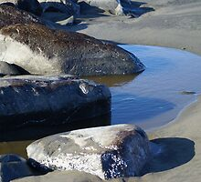 Tidal Pool at the North Jetty, Ocean Shores, Washington by Loisb