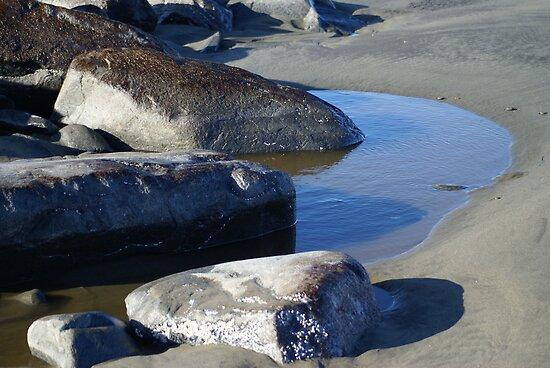 Tidal Pool at the North Jetty, Ocean Shores, Washington by Loisb