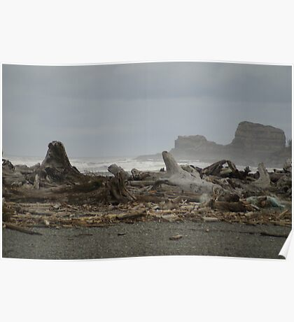 Rock Headlands seen from Moclips Poster