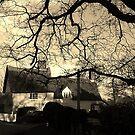 Suffolk scene by Kerina Strevens