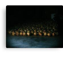 a flood of onions  Canvas Print