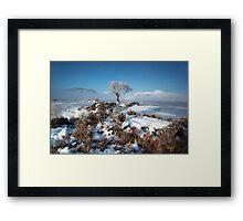 Mist and Ice Framed Print