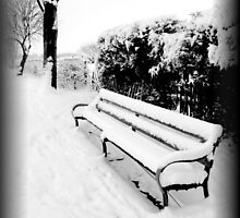 Snowy Bench by Vicki Spindler (VHS Photography)