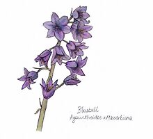 Quirky Botanical Bluebell Drawing by Whotheheckispip
