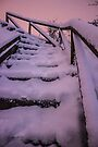 Stairway to Heaven by Avril Harris