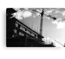 Crane & Sky Canvas Print