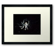 ©NS Windy Web IA. Framed Print