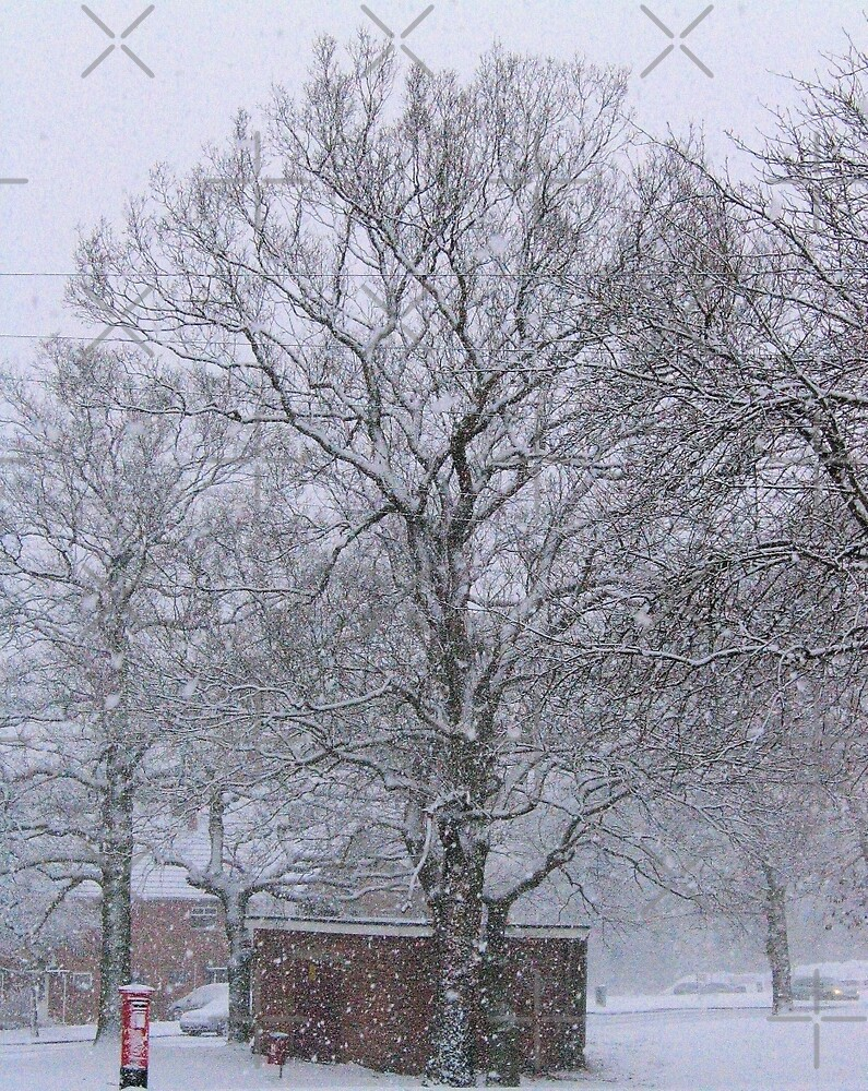 Trees and Post Box in the Snow by Avril Harris