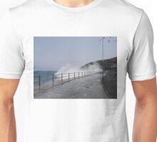 Spray Splashing over Promenade Unisex T-Shirt