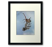 ©NS Strange On The Web IA. Framed Print