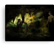 The Visitor Canvas Print