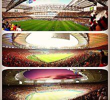 Stadia in Brasil by omhafez