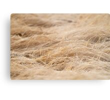 Relaxed Field of Grass Metal Print