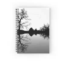Wild Geese V Formation Spiral Notebook