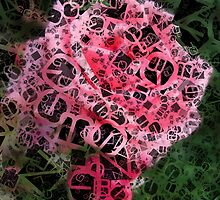 Pink Roses in Anzures 2 Letters 4 by Christopher Johnson