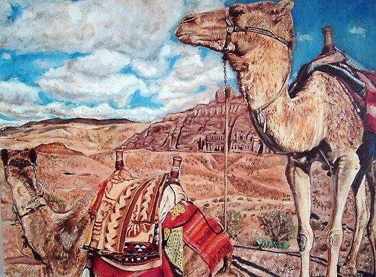 Camels at Petra by Valentina Henao