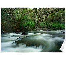 Hilo, Hawaii Stream Poster
