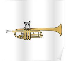 Trumpet Cat Poster