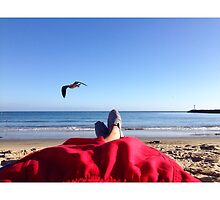 Beach Bummin by omhafez