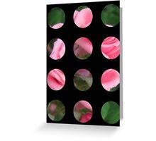 Pink Roses in Anzures 2 Art Circles 2 Greeting Card