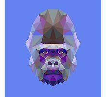 Geometric Gorilla Photographic Print