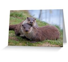 Otterly in Love (European Otters) Greeting Card