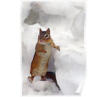 """I'll Take A Frozen Peanut Colada...."" - Episode 1 Poster"