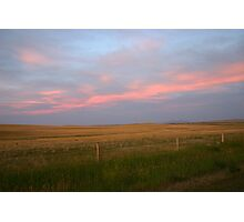 Pink Prairies Photographic Print