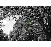 World Through a Bubble Photographic Print