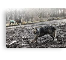 The vicious dog Canvas Print