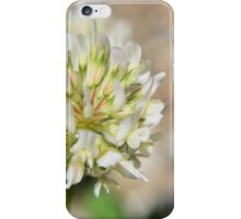 Clover Macro iPhone Case/Skin
