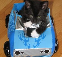 Speed Racer with Catitude by Love4KittenZ