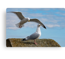 Do You Hear Wings Flapping? Canvas Print