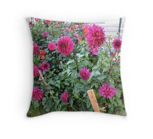 Someone's Dahlia Garden Throw Pillow