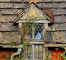 Rear Window by Kim Slater