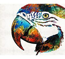 Parrot Head Art By Sharon Cummings Photographic Print