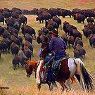 Driving The Herd...Holding Pens By Sundown by Susan Bergstrom
