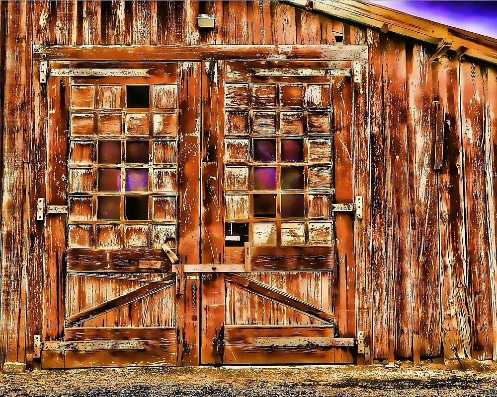 Barn Doors by Herman Hodges