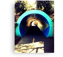 Davis Troll Tunnel Canvas Print