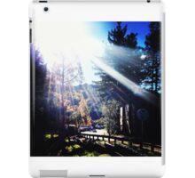 Berkeley iPad Case/Skin