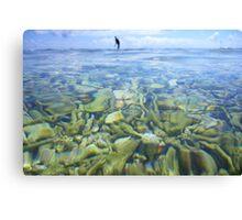 Coral Garden at Lady Elliot Island Canvas Print