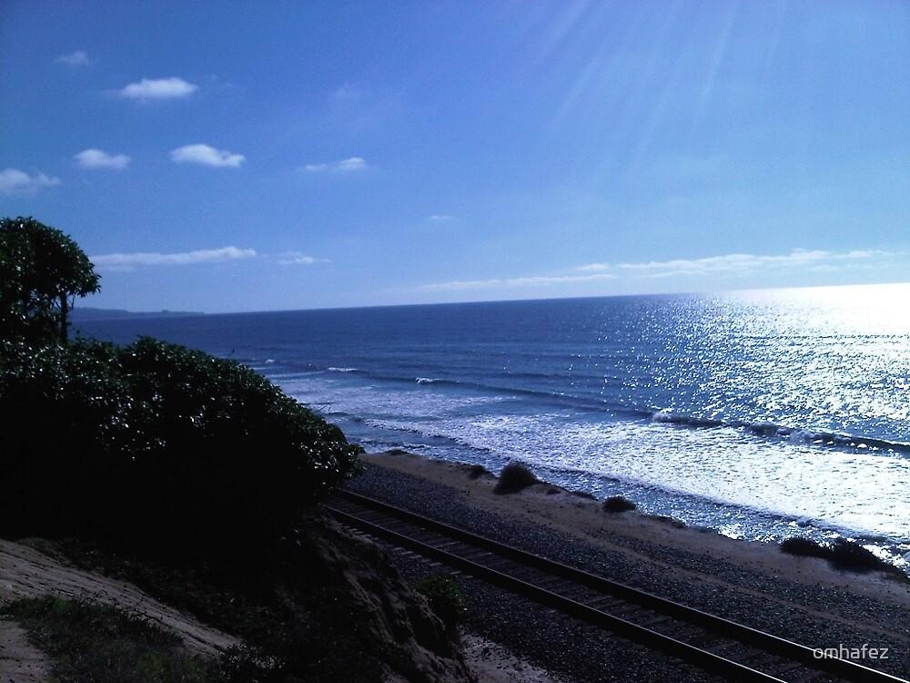 San Diego Beach Life by omhafez