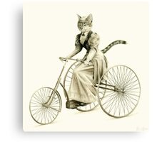 Victorian Cat Series 03 Canvas Print