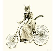 Victorian Cat Series 03 Photographic Print