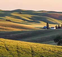 Palouse farm at sunset by Linda Sparks