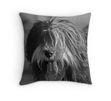 A good old fashioned English shaggy dog Throw Pillow