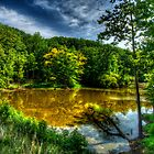 The Pond - HDR by capturedjourney