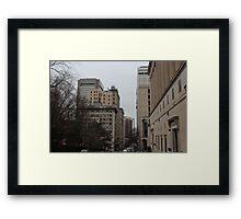 Concrete Jungle Framed Print